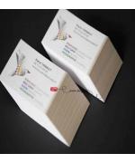 cartes de visites papier couché brillant